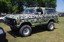 Ford_Bronco_Custom__8706.jpg