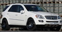 Mercedes_ML_tuning_313.jpg