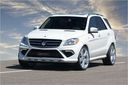 Mercedes_ML_tuning_371.jpg